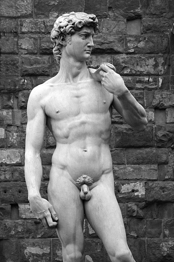El David. Imagen de Klaus Stebani en Pixabay
