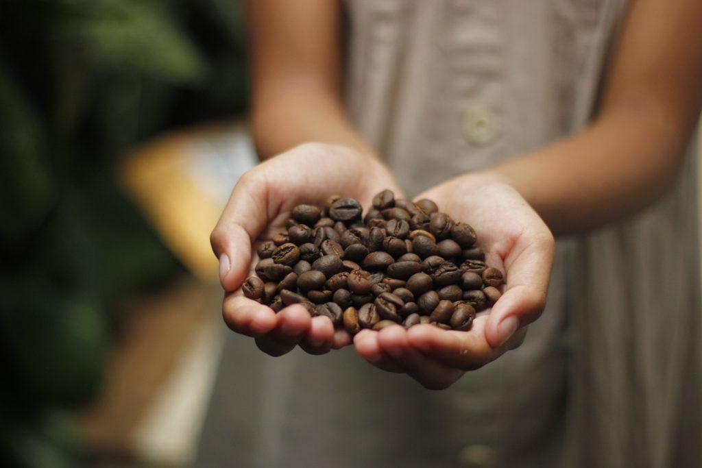 Granos de café. Imagen de Gideon Putra en Pixabay