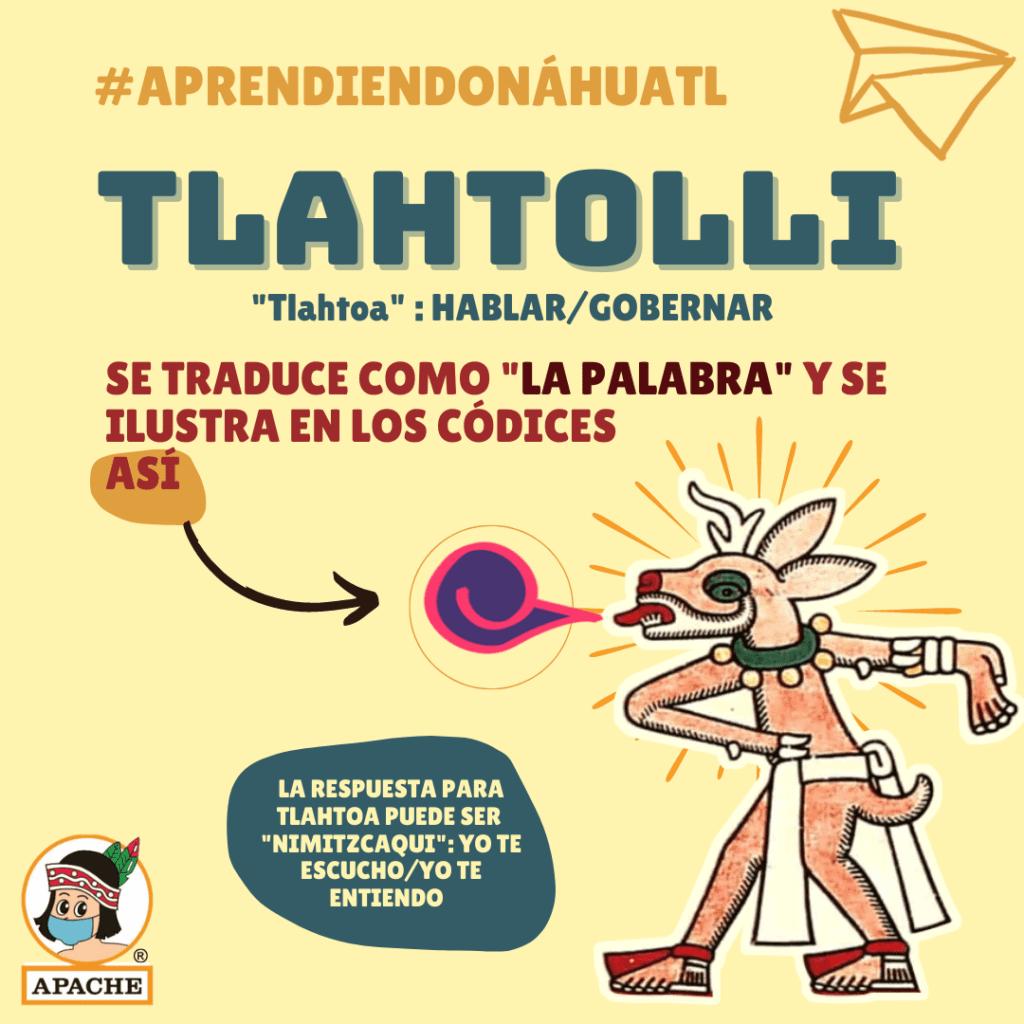 Tlatohlli. Imagen vía Triciclos Apache: https://www.facebook.com/TricicloApache/photos/a.109777515760781/5227857443952737