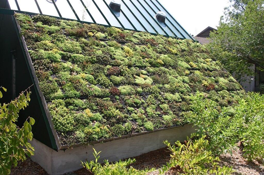 Techo verde en el Museo Viviente de Virginia en Newport News, Virginia. Imagen de Ryan Somma vía wikimedia commons.