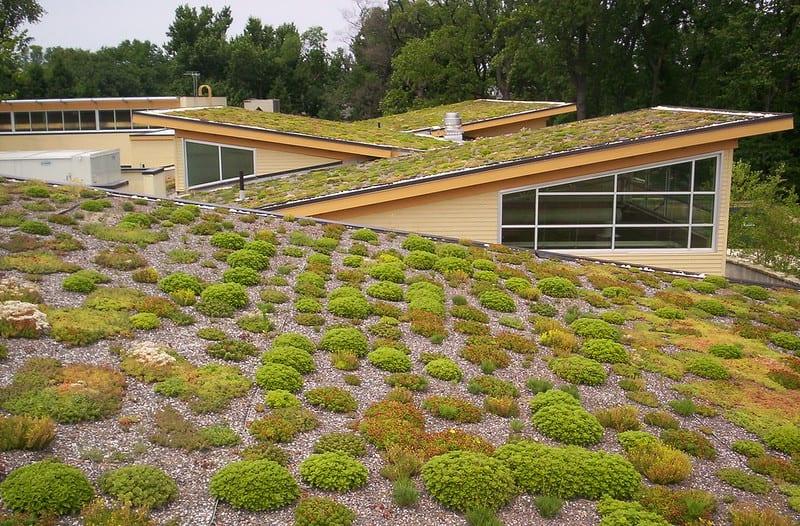 Techo verde en  Walter Reed CC. Imagen de Arlington County vía Flickr