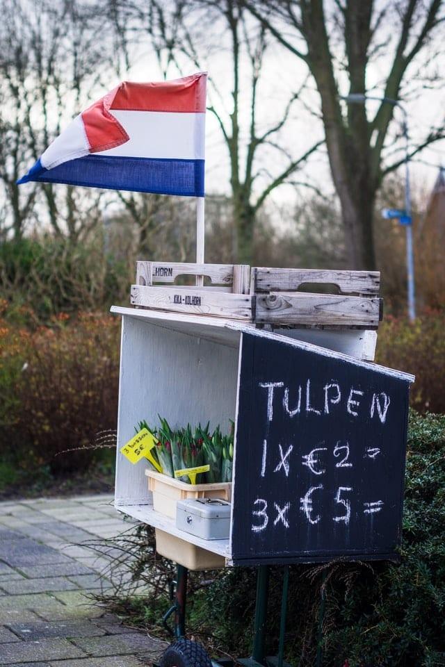 Holanda no es un país. Imagen de  Sven Brandsma en Unsplash