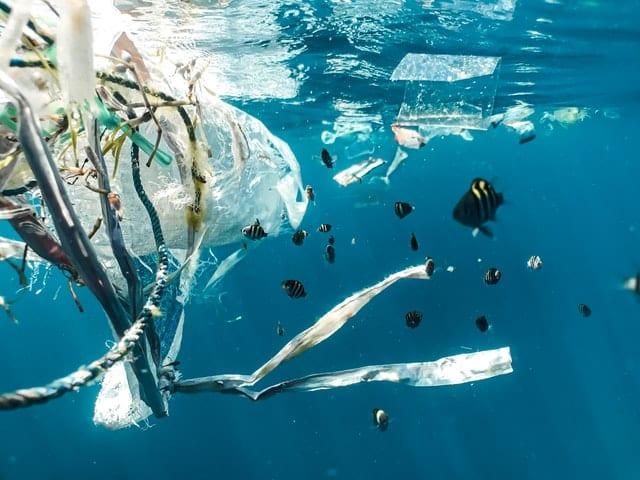 Contaminación por plástico.. Imagen de  Naja Bertolt Jensen en Unsplash